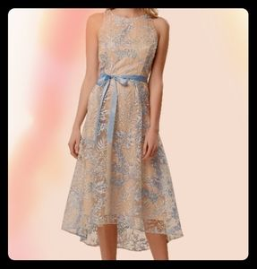 Tahari embroidered hi-lo dress powder blue